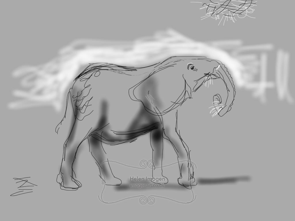 Elephant at Noah's ark Farm Zoo