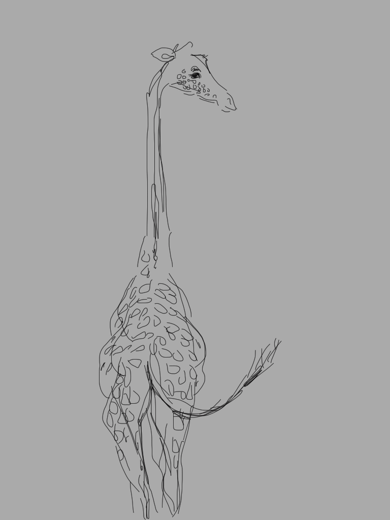 Giraffe from the back