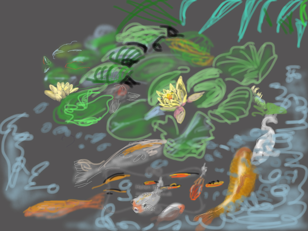 Koi with waterlilies
