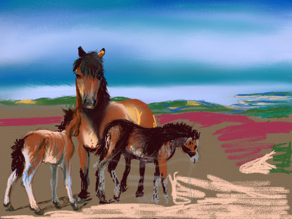 Coast of Wales from Exmoor with ponies